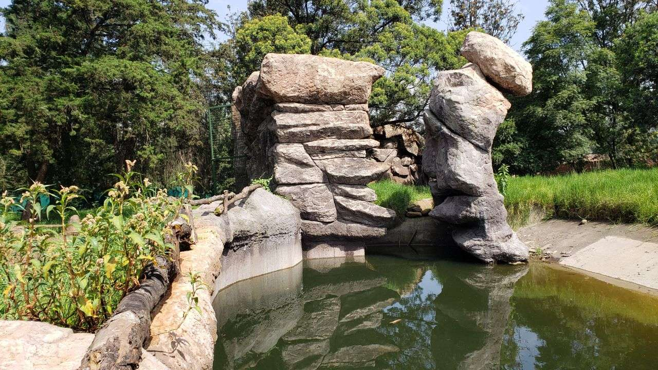 You are currently viewing Addis Zoo Park