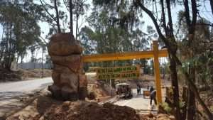 Another legacy at Entoto Natural Park project